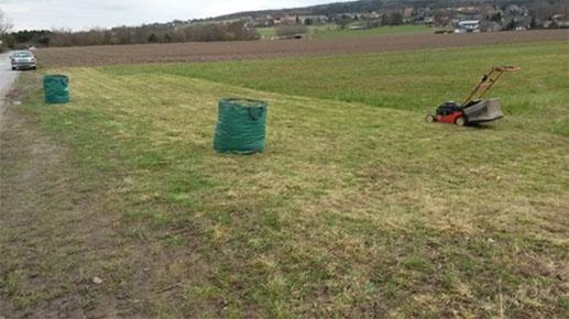Für zu Hause zum Nachmachen - Als Bodenvorbereitung muss der Rasen zunächst kurz gemäht und der Rasenschnitt entfernt weden.